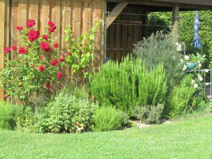 Der Garten wartet Kunst Offen Juni 2019